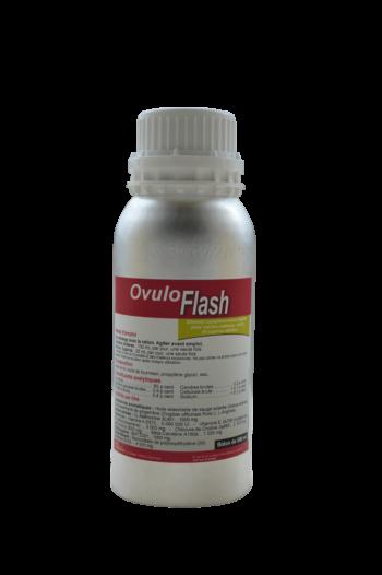 OvuloFlash solution liquide pour une bonne reproduction des vaches