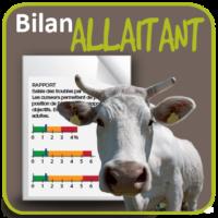 Bilan allaitant : calculer les pertes engendrées par les maladies du troupeau