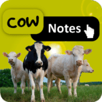 Cow Notes