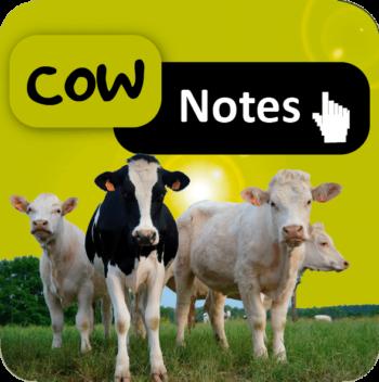 Cow Notes, surveillance et suivi de troupeaux laitiers et allaitants