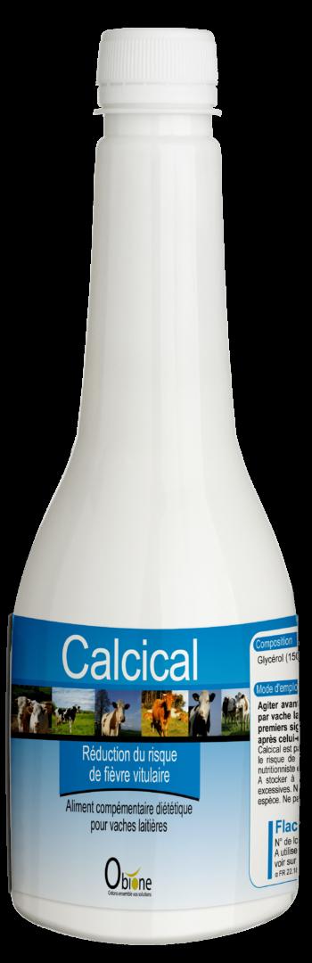 Calcical est une solution buvable riche en calcium pour les vaches laitières