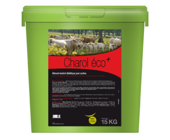 Charol éco+ le plein d'oligo-éléments et vitamines vaches indispensables pour une fin de gestation