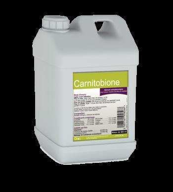 Carnitobione pour les troubles de la digestion et les diarrhées du veau